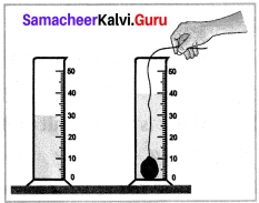 Samacheer Kalvi 7th Science Solutions Term 1 Chapter 1 Measurement image - 18