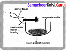 Samacheer Kalvi 7th Science Solutions Term 2 Chapter 3 Changes Around Us image -7