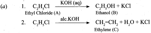 Tamil Nadu 11th Chemistry Model Question Paper 5 English Medium 20