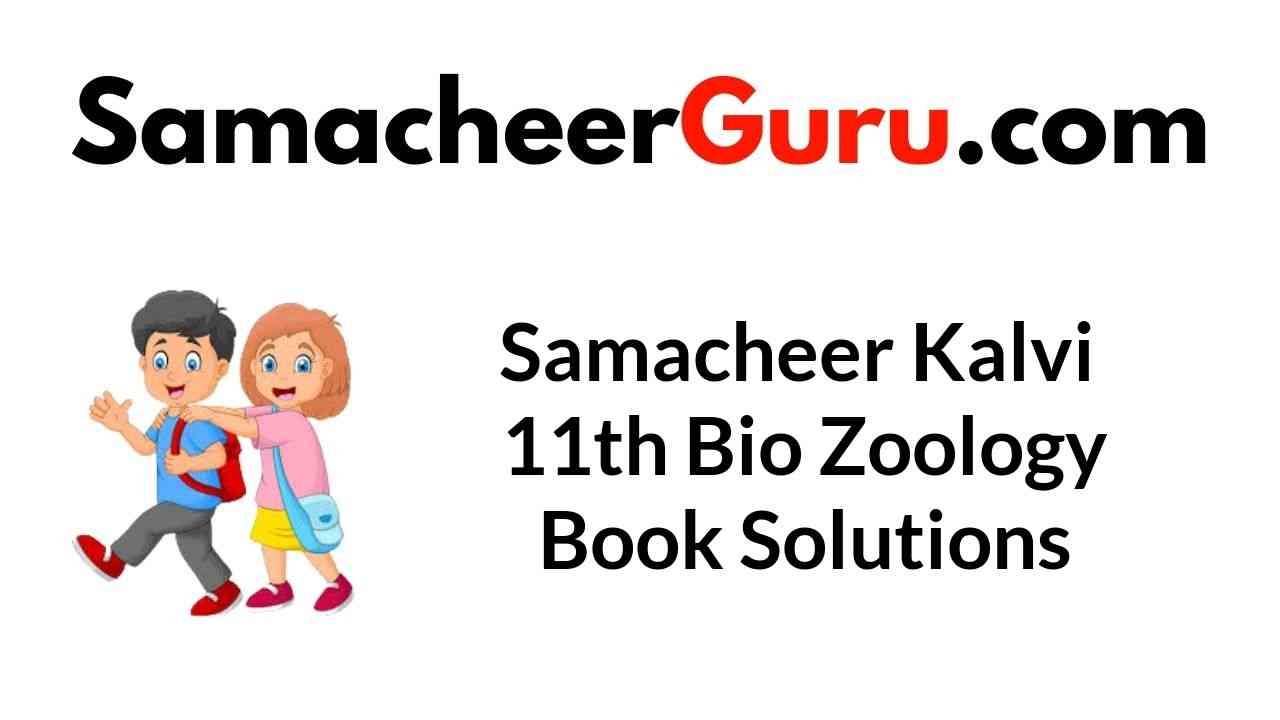 Samacheer Kalvi 11th Bio Zoology Book Solutions Answers Guide