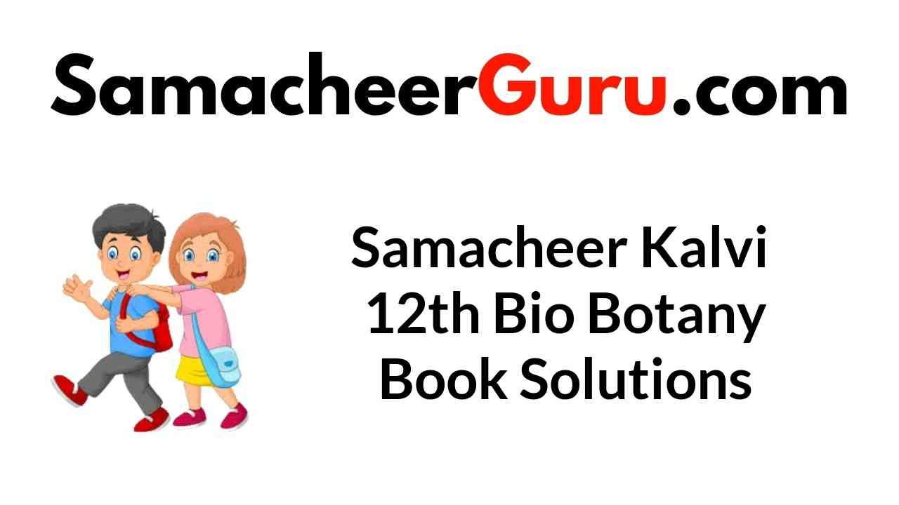 Samacheer Kalvi 12th Bio Botany Book Solutions Answers Guide