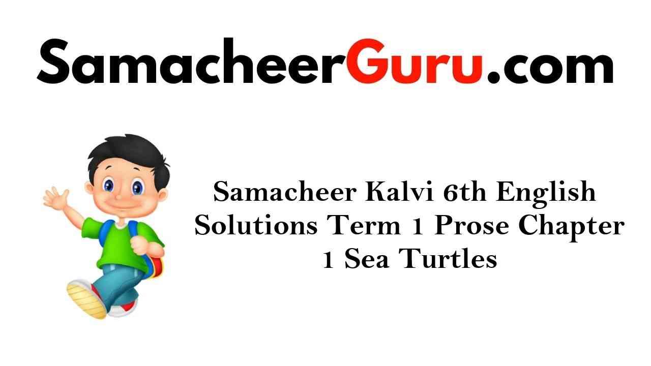 Samacheer Kalvi 6th English Solutions Term 1 Prose Chapter 1 Sea Turtles
