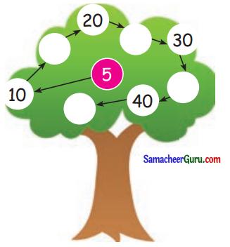 Samacheer Kalvi 3rd Maths Guide Term 1 Chapter 2 எண்கள் 7