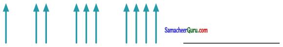 Samacheer Kalvi 3rd Maths Guide Term 1 Chapter 3 அமைப்புகள் 13