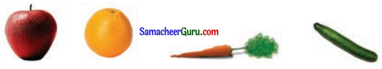 Samacheer Kalvi 3rd Maths Guide Term 1 Chapter 6 தகவல் செயலாக்கம் 1