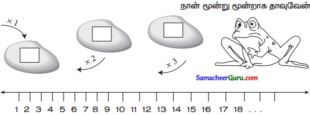 Samacheer Kalvi 3rd Maths Guide Term 2 Chapter 1 எண்கள் 12
