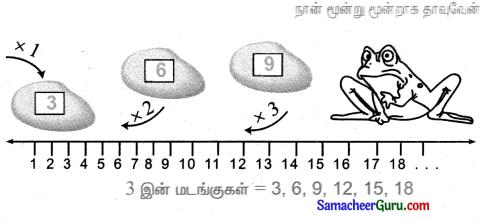 Samacheer Kalvi 3rd Maths Guide Term 2 Chapter 1 எண்கள் 13