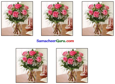 Samacheer Kalvi 3rd Maths Guide Term 2 Chapter 1 எண்கள் 26