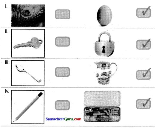 Samacheer Kalvi 3rd Maths Guide Term 2 Chapter 3 அளவைகள் 2