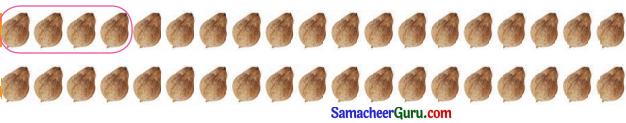 Samacheer Kalvi 3rd Maths Guide Term 3 Chapter 2 எண்கள் 10