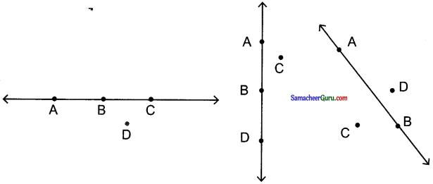 Samacheer Kalvi 6th Maths Guide Term 1 Chapter 4 வடிவியல் Ex 4.3 3