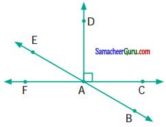 Samacheer Kalvi 6th Maths Guide Term 1 Chapter 4 வடிவியல் Ex 4.4 29