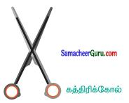 Samacheer Kalvi 6th Maths Guide Term 1 Chapter 4 வடிவியல் Ex 4.4 4
