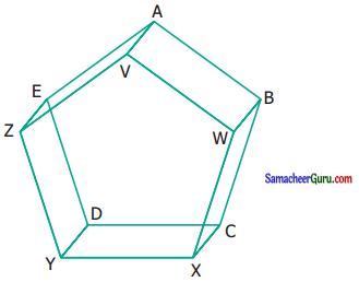 Samacheer Kalvi 6th Maths Guide Term 1 Chapter 4 வடிவியல் Ex 4.4 5