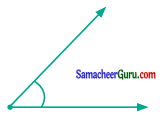 Samacheer Kalvi 6th Maths Guide Term 1 Chapter 4 வடிவியல் Ex 4.4 9