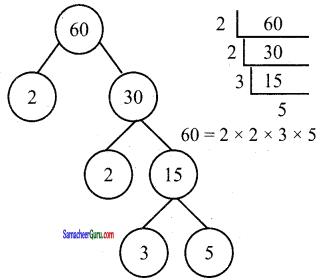Samacheer Kalvi 6th Maths Guide Term 2 Chapter 1 எண்கள் Ex 1.1 1