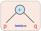 Samacheer Kalvi 6th Maths Guide Term 2 Chapter 5 தகவல் செயலாக்கம் Ex 5.1 19