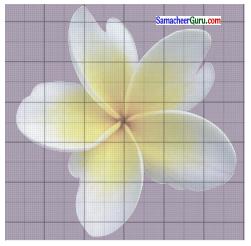 Samacheer Kalvi 6th Maths Guide Term 3 Chapter 3 சுற்றளவு மற்றும் பரப்பளவு Ex 3.2 4