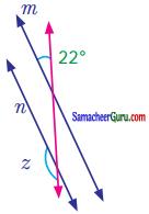 Samacheer Kalvi 7th Maths Guide Term 1 Chapter 5 எண்ணியல் Ex 5.2 19