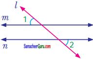 Samacheer Kalvi 7th Maths Guide Term 1 Chapter 5 எண்ணியல் Ex 5.2 2
