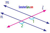 Samacheer Kalvi 7th Maths Guide Term 1 Chapter 5 எண்ணியல் Ex 5.2 3