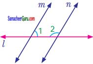Samacheer Kalvi 7th Maths Guide Term 1 Chapter 5 எண்ணியல் Ex 5.2 4