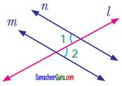 Samacheer Kalvi 7th Maths Guide Term 1 Chapter 5 எண்ணியல் Ex 5.2 5