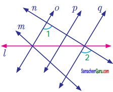 Samacheer Kalvi 7th Maths Guide Term 1 Chapter 5 எண்ணியல் Ex 5.2 6