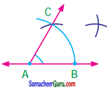 Samacheer Kalvi 7th Maths Guide Term 1 Chapter 5 எண்ணியல் Ex 5.5 11