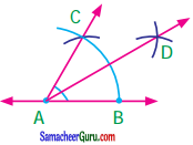 Samacheer Kalvi 7th Maths Guide Term 1 Chapter 5 எண்ணியல் Ex 5.5 12