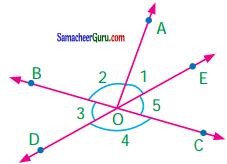 Samacheer Kalvi 7th Maths Guide Term 1 Chapter 5 எண்ணியல் Ex 5.6 4