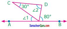Samacheer Kalvi 7th Maths Guide Term 1 Chapter 5 எண்ணியல் Ex 5.6 6