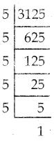 Samacheer Kalvi 7th Maths Guide Term 2 Chapter 3 இயற்கணிதம் Ex 3.1 4