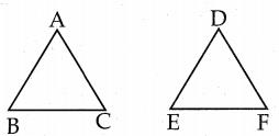 Samacheer Kalvi 7th Maths Guide Term 2 Chapter 4 வடிவியல் Ex 4.2 1