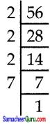 Samacheer Kalvi 7th Maths Guide Term 3 Chapter 3 இயற்கணிதம் Ex 3.1 3
