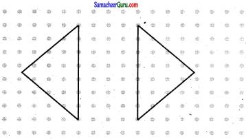 Samacheer Kalvi 7th Maths Guide Term 3 Chapter 4 வடிவியல் Ex 4.3 13