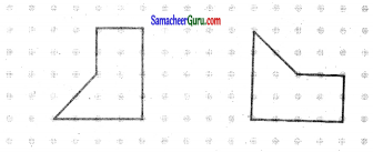 Samacheer Kalvi 7th Maths Guide Term 3 Chapter 4 வடிவியல் Ex 4.3 14