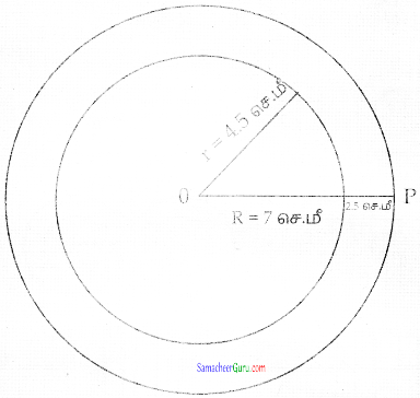 Samacheer Kalvi 7th Maths Guide Term 3 Chapter 4 வடிவியல் Ex 4.3 15