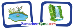 Samacheer Kalvi 3rd English Guide Term 1 Chapter 2 The Insects 1