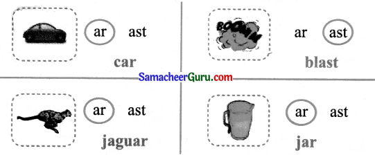 Samacheer Kalvi 3rd English Guide Term 1 Chapter 2 The Insects 17