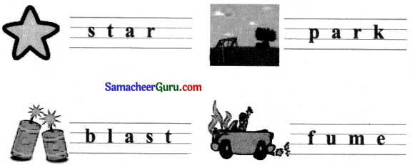 Samacheer Kalvi 3rd English Guide Term 1 Chapter 2 The Insects 19