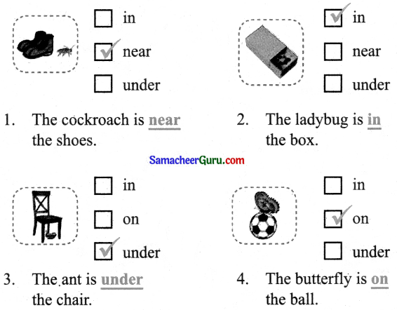 Samacheer Kalvi 3rd English Guide Term 1 Chapter 2 The Insects 25