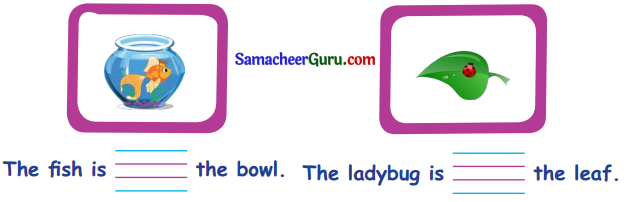 Samacheer Kalvi 3rd English Guide Term 1 Chapter 2 The Insects 26