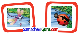 Samacheer Kalvi 3rd English Guide Term 1 Chapter 2 The Insects 3