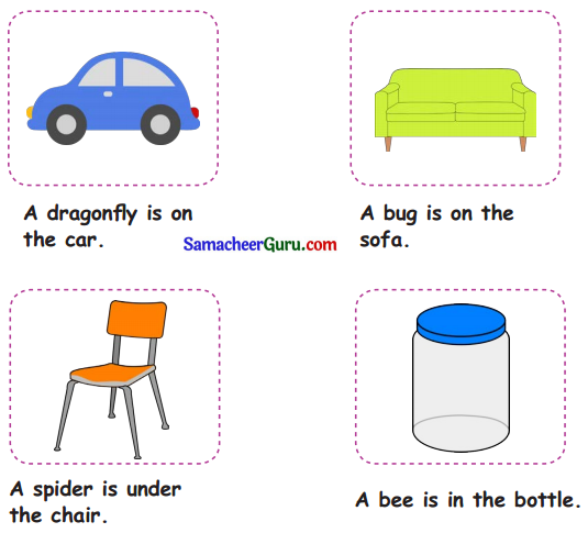 Samacheer Kalvi 3rd English Guide Term 1 Chapter 2 The Insects 30