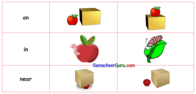 Samacheer Kalvi 3rd English Guide Term 1 Chapter 2 The Insects 31
