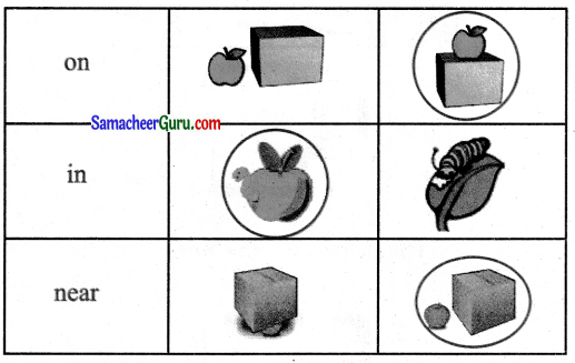 Samacheer Kalvi 3rd English Guide Term 1 Chapter 2 The Insects 32