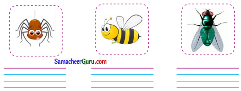 Samacheer Kalvi 3rd English Guide Term 1 Chapter 2 The Insects 39