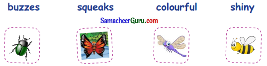 Samacheer Kalvi 3rd English Guide Term 1 Chapter 2 The Insects 5