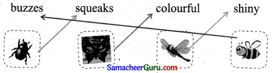 Samacheer Kalvi 3rd English Guide Term 1 Chapter 2 The Insects 6